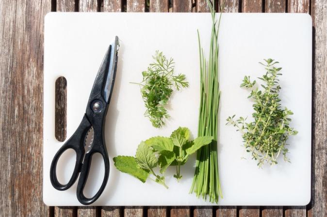 Canva - Herbs on a Chopboard