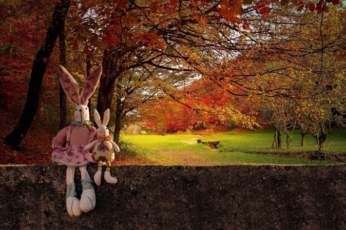 Canva - Rabbit Toys in The Forest